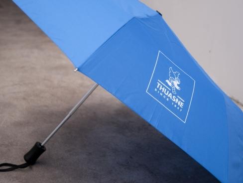 1401-Thuasne-Parapluie 2